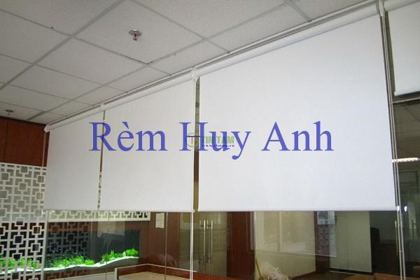 rem-cuon-ngan-phong